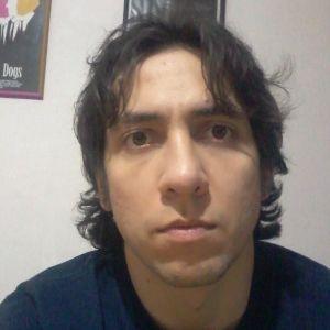 Martín Falces